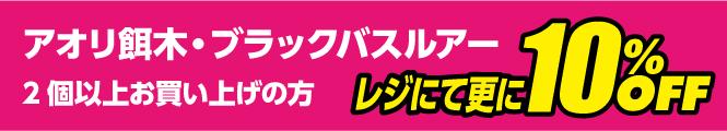 アオリ餌木・ブラックバスルアーを2個以上お買い上げの方、レジにて更に10%OFF!!