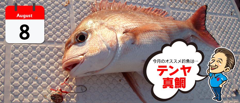 わたなべ オススメ釣魚「鮎」