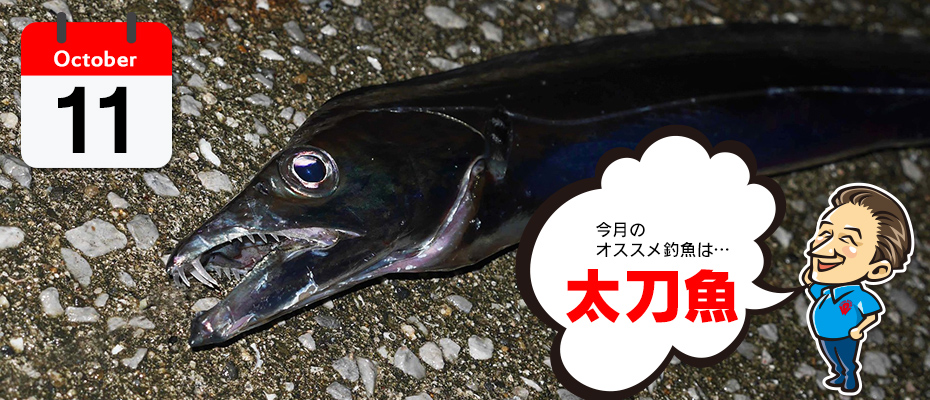 わたなべ オススメ釣魚「タチウオ」