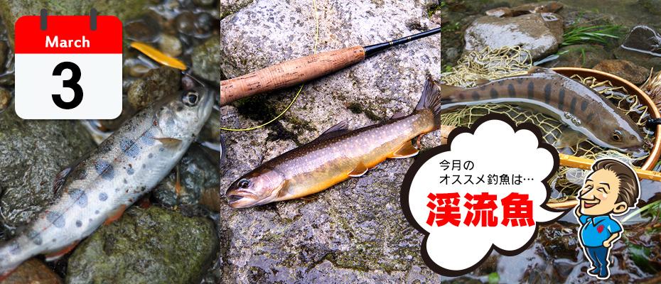 3月のオススメ釣魚「渓流魚」