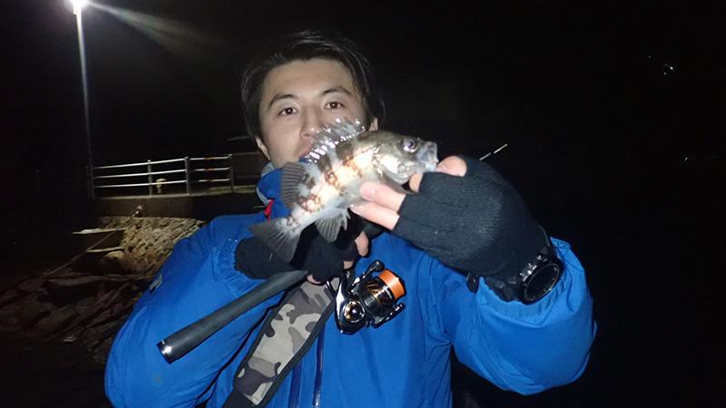 メバリング釣行