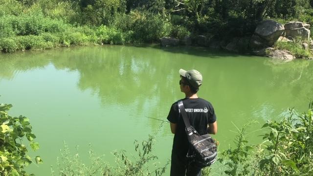 香川県府中湖 釣行