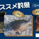 2020-12osusume_title