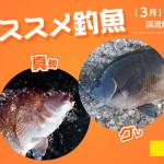 2103osusume_title